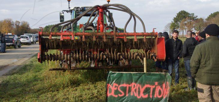 Reportage agricole : le couvert végétal
